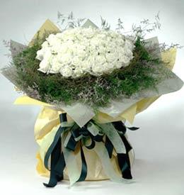 株洲网上订情人鲜花