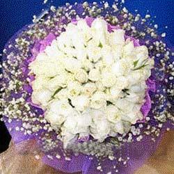 丹阳网上订情人鲜花