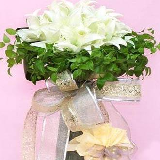 阳春网上订情人鲜花