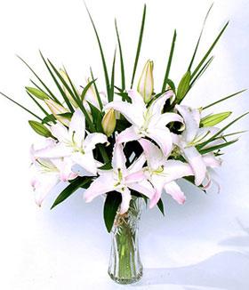 南安网上生日鲜花