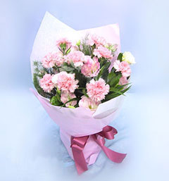 保定网上生日鲜花