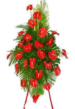 西安网上商业鲜花