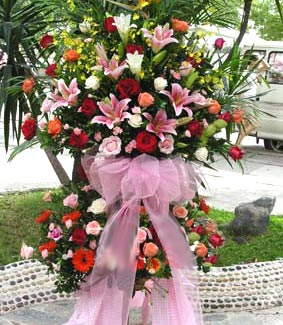 邢台网上商业鲜花