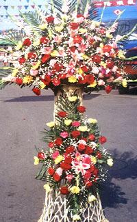 北京網上商業鮮花