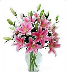 上海网上订情人鲜花