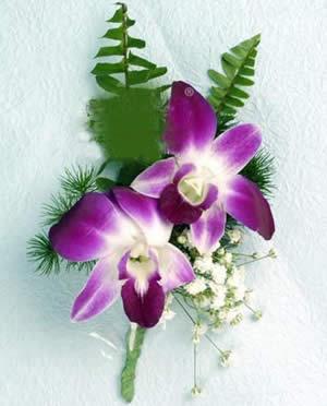 石斛兰胸花