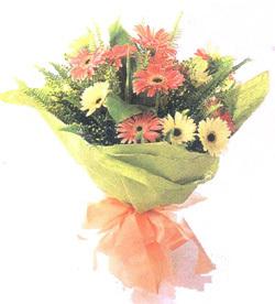 宾川县网上生日鲜花