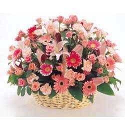 廊坊网上生日鲜花
