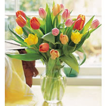 寿州网上订情人鲜花