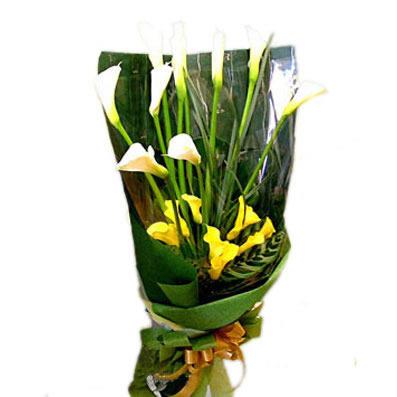 桂林网上生日鲜花