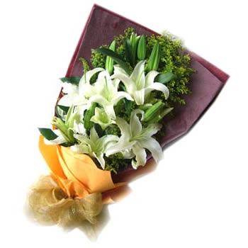江门网上生日鲜花