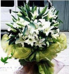 乌鲁木齐网上订花-拥有
