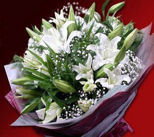 三门峡网上订情人鲜花