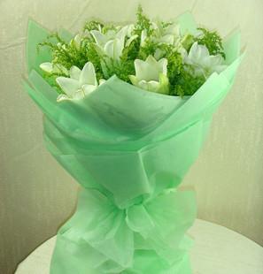 厦门鲜花:纯美