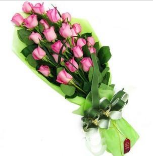 广州鲜花:绿色心情