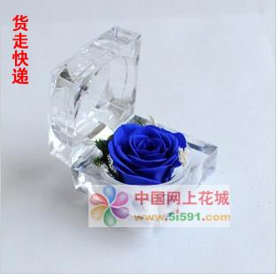 戒指盒保鲜花-蓝玫瑰