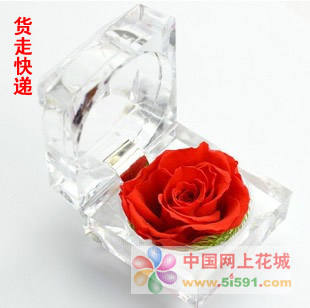 戒指盒保鲜花-红玫瑰