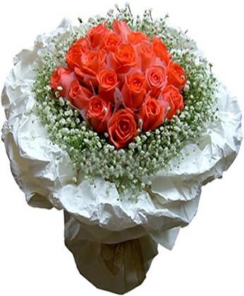 锦州鲜花:阳光丽人