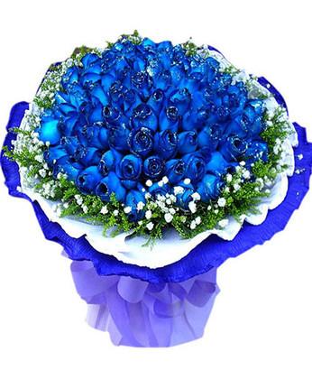 莲湖网上订情人鲜花