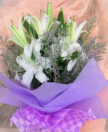 儋州网上鲜花