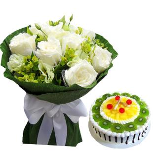 爱思绿植花卉-你是我的最爱