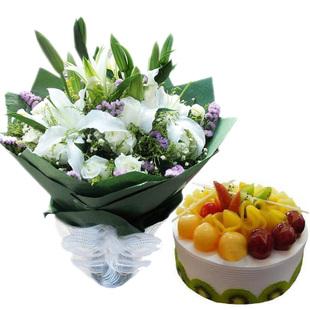 爱思绿植花卉-祝福蛋糕