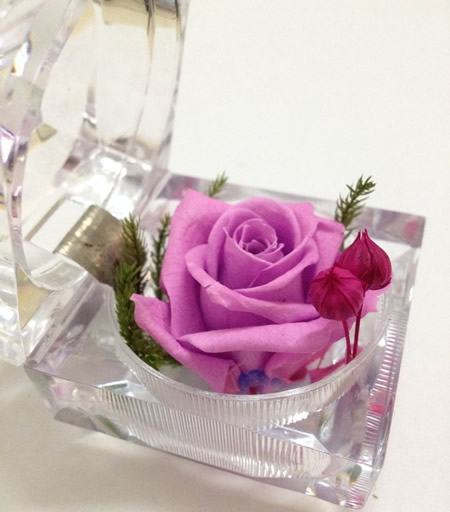 戒指盒保鲜花-浅紫玫瑰