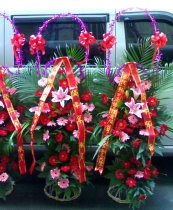 深圳网上商业鲜花