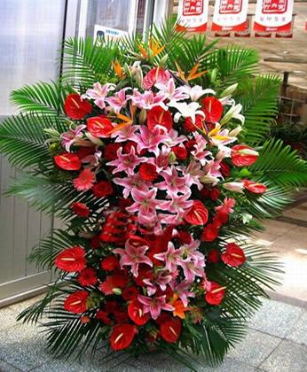 嵩明网上商业鲜花