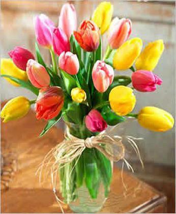 厦门订花:迷人的春色