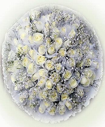 溧水网上订情人鲜花