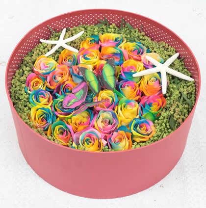 中山永生花:彩虹玫瑰 最初的爱