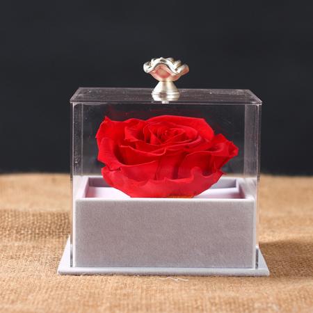 青岛网上订情人鲜花