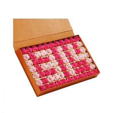 台州肥皂花:肥皂花-1314 A款