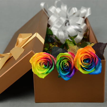 丽水永生花:彩虹玫瑰-永恒
