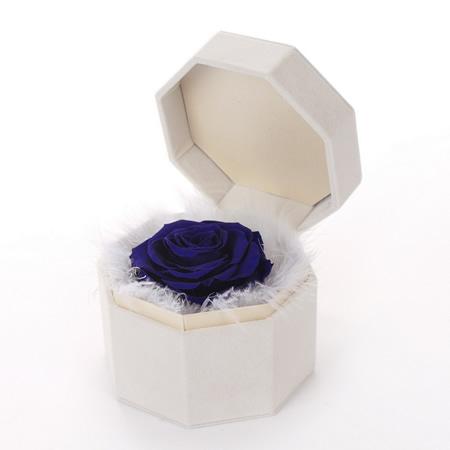 惠州网上订情人鲜花