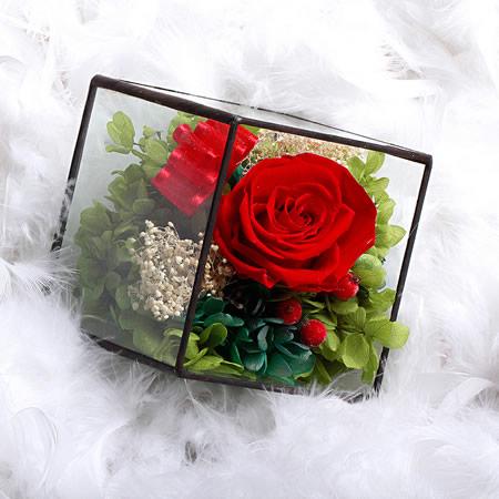 洛阳网上订情人鲜花