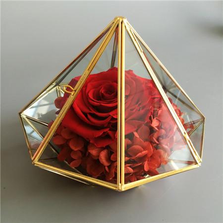 钻石款红色