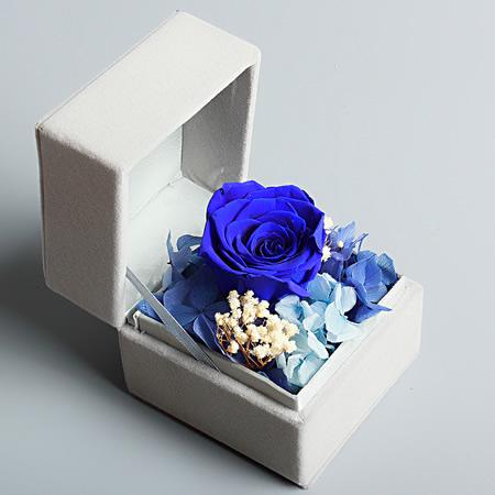 宁海网上订情人鲜花