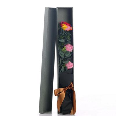 厦门肥皂花:香皂花-1朵彩虹2朵粉玫瑰