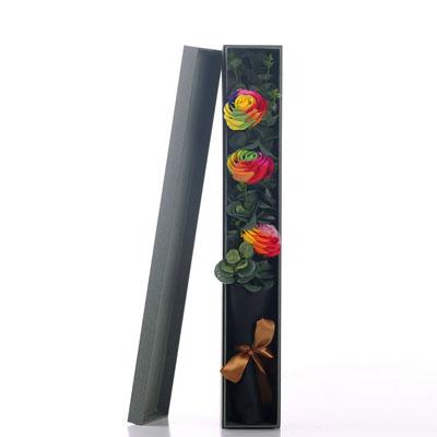 爱思水果篮:香皂花-3朵彩虹玫瑰