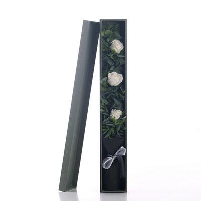 北京肥皂花:香皂花-3朵白玫瑰