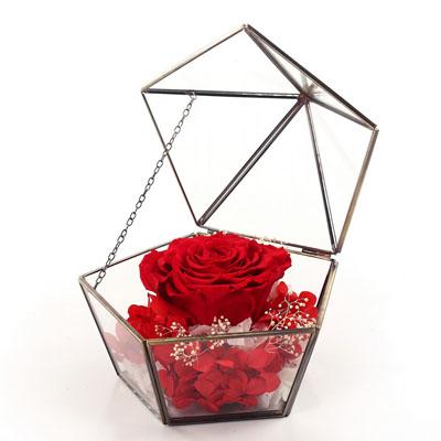 广州永生花:五星玻璃花房 单朵红色