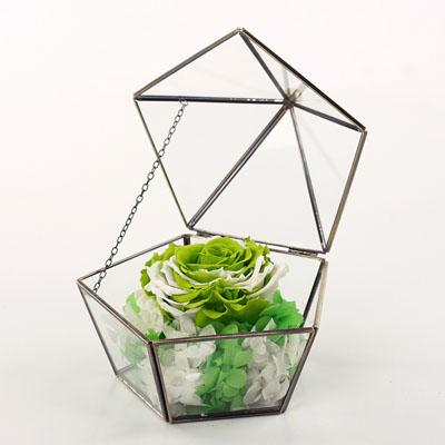广州永生花:五星玻璃花房 单朵绿色