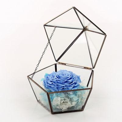 广州永生花:五星玻璃花房 单朵浅蓝
