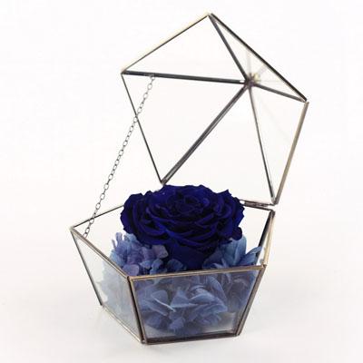 广州永生花:五星玻璃花房 单朵深蓝