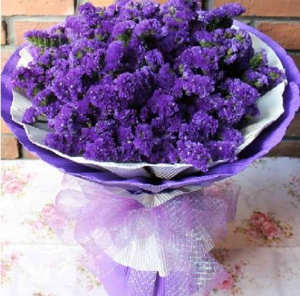 兰州西固区网上生日鲜花