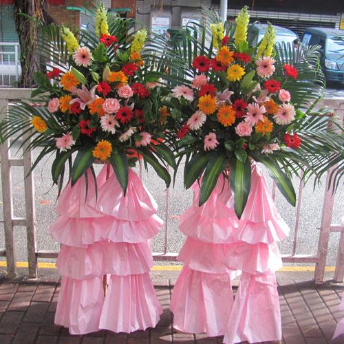 厦门网上订花-开业花蓝5(单个)